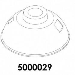5000029