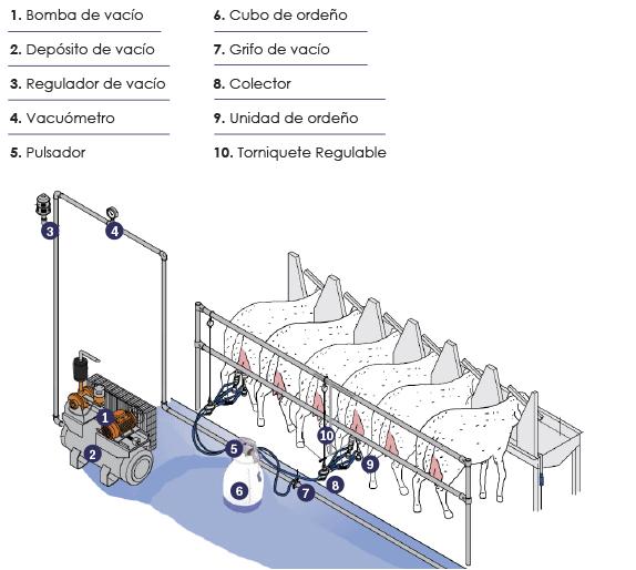 Sistema de ordeño para cabras y ovejas